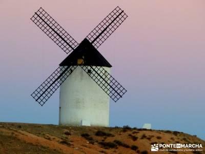 Aceite Cornicabra; Mora; Tembleque; Toledo; viajes culturales desde madrid;senderismo navacerrada